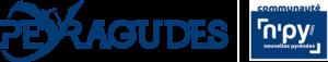 Logo N'PY + Peyragudes